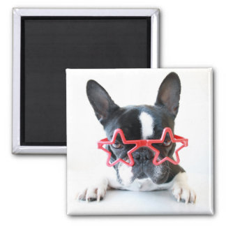 French Bulldog With Red Star Glasses 2 Inch Square Magnet
