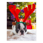 French Bulldog With Reindeer Horns Postcard