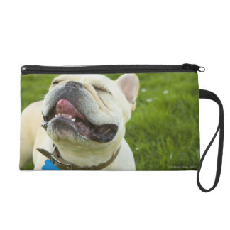 French Bulldog Wristlet