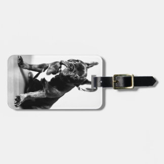 French Bulldogge Tag For Bags