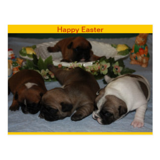 French Bulldoggen greeting map Easter Postcard