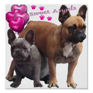 French Bulldoggen poster Sweet Angels