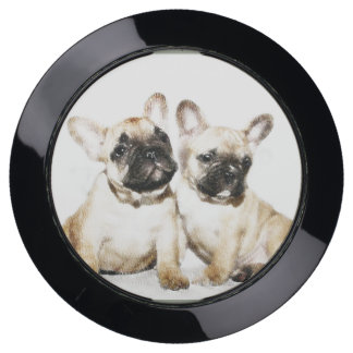 French Bulldogs Dog Charge hub