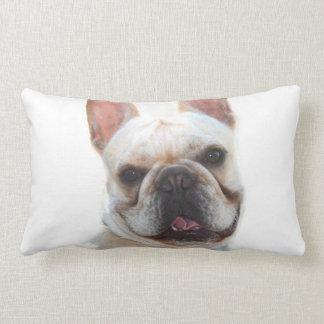French Bullodg American Mojo lumbar pillow