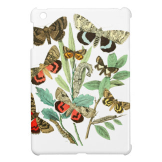 French Butterflies Cover For The iPad Mini