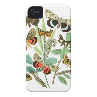 French Butterflies iPhone 4 Case