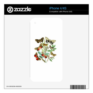 French Butterflies iPhone 4 Decal
