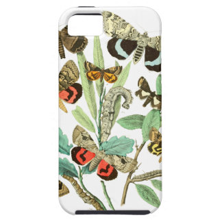 French Butterflies iPhone SE/5/5s Case
