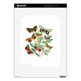 French Butterflies Skin For iPad 2