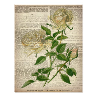 french country botanical art victorian white rose letterhead