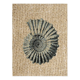 french country burlap beach coastal chic seashell postcard