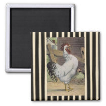 French Country White Rooster Hen Fridge Magnet