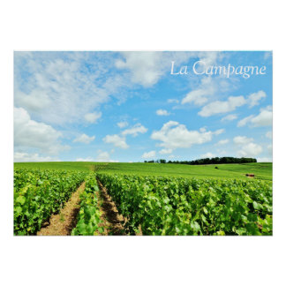 """French Countryside 28"""" x 20"""" Poster"""