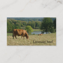 French countryside with Limousin cows Business Card