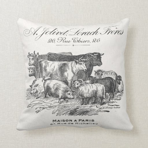 Reversible Animal Pillow : French farm animals reversible pillow with toile. Zazzle