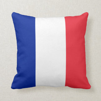 French Flag pillows