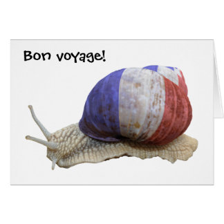 French flag snail greeting card