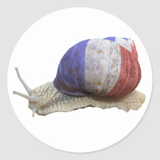 French flag snail classic round sticker
