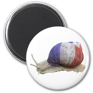French flag snail 2 inch round magnet