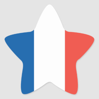 French Flag Sticker