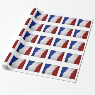FRENCH FLAG WRAPPING PAPER