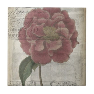 French Floral III Tile