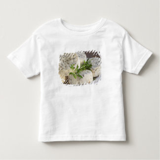 French goat cheese - chevre - with herbs on a toddler t-shirt