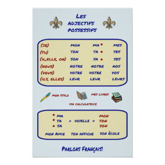 French Grammar Possessive Adjectives Poster