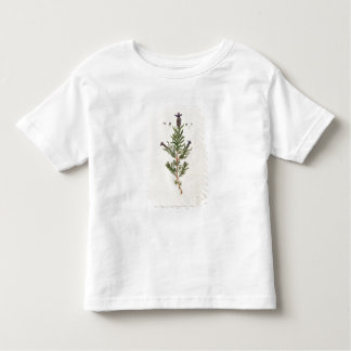 French Lavender, plate 241 from 'A Curious Herbal' T Shirt