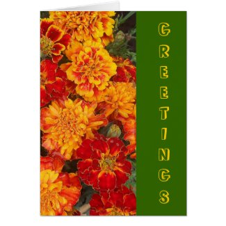 French Marigolds' Greetings Card