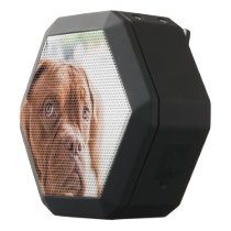 French Mastiff Black Bluetooth Speaker