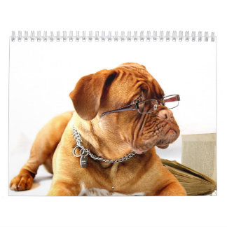 French Mastiff Dogue de Bordeaux Calendar