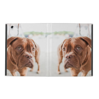 French Mastiff iPad Cover