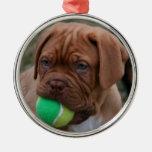 French Mastiff Puppy Metal Ornament