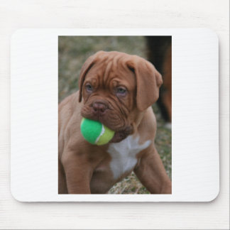 French Mastiff Puppy Mouse Pads