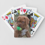 French Mastiff Puppy Playing Cards