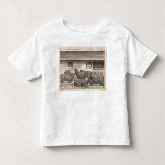 French merino sheep toddler t-shirt