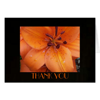 French Mist-Thank You Card