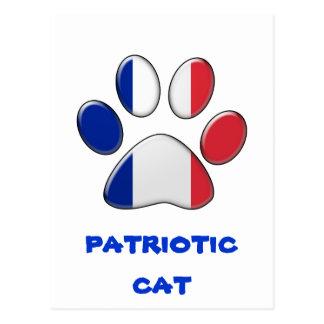 French patriotic cat postcard