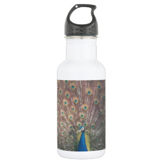 French Peacock 18oz Water Bottle