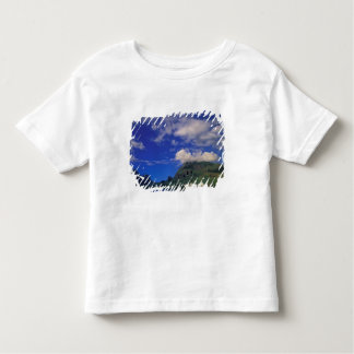 French Polynesia, Moorea. Cooks Bay. Cruise ship 3 Toddler T-shirt