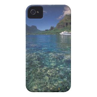 French Polynesia Moorea Cooks Bay Cruise ship Blackberry Cases