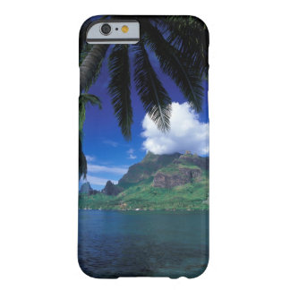 French Polynesia, Moorea. Cooks Bay. Green Barely There iPhone 6 Case