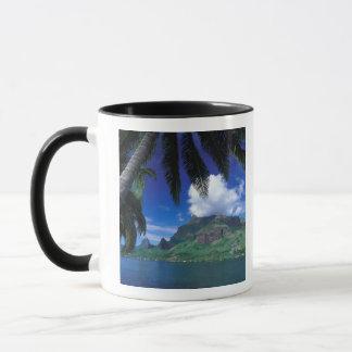 French Polynesia, Moorea. Cooks Bay. Green Mug
