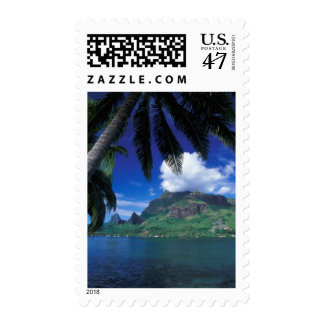 French Polynesia, Moorea. Cooks Bay. Green Postage