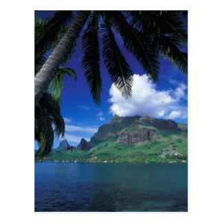 French Polynesia, Moorea. Cooks Bay. Green Post Card