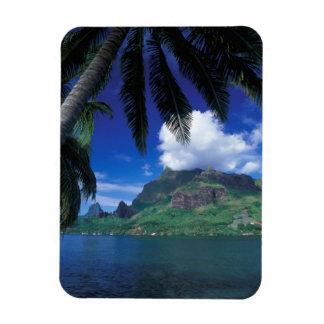 French Polynesia, Moorea. Cooks Bay. Green Rectangular Photo Magnet
