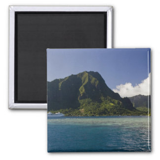 French Polynesia, Moorea. The Paul Gauguin Magnet
