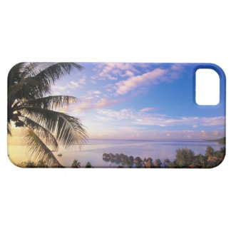 French Polynesia, Moorea. View of the Baie de iPhone SE/5/5s Case