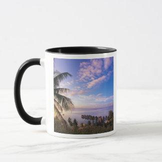 French Polynesia, Moorea. View of the Baie de Mug